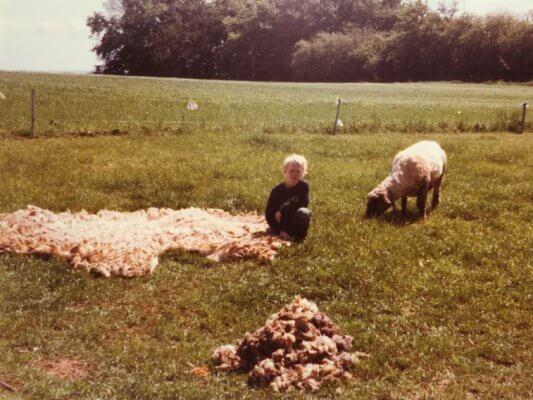 Billede af Jens ved siden af nyklippet får og en stor bunke uld